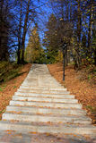 Scala e fogli di autunno Fotografie Stock Libere da Diritti