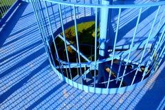 Scala elicoidale del ferro di una torre dell'allerta Immagine Stock Libera da Diritti