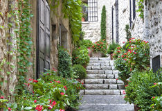Scala grigia nella vecchia casa di pietra del villaggio con le piante di giardino Fotografia Stock
