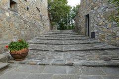 Scala medievali in fattoria antica della Toscana, Italia, Europa Fotografie Stock Libere da Diritti