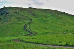 Scala naturale scolpita alla collina verde situata in Islanda del sud vicino la cascata di Skogafoss Immagini Stock