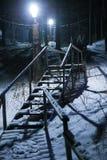 Scala nel legno di inverno alla notte Immagine Stock