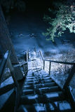 Scala nel legno di inverno alla notte Fotografia Stock Libera da Diritti