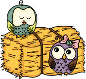 Couple owl with bale of hay Royalty Free Stock Image