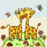 Cute couple giraffe  in a forest background Royalty Free Stock Photos