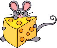 Cute mouse with slice of cheese Stock Photos