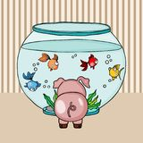 Cute pig looking for globe aquarium with little fishes Royalty Free Stock Photography