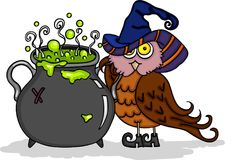 Halloween cute owl with witch caldron Stock Photo