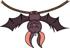 Happy bat hanging on a rope. Scalable vectorial image representing a happy bat hanging on a rope, isolated on white Royalty Free Stock Photography