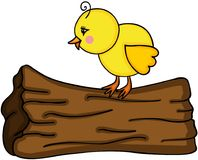 Little chick on tree trunk Royalty Free Stock Images