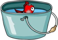 Little red fish in bucket Royalty Free Stock Photo