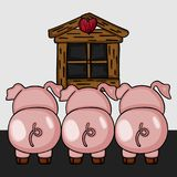 Three little pigs to back view Stock Images