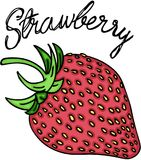 Sweet red strawberry Royalty Free Stock Photos