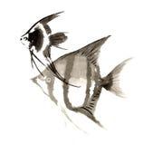 Scalaire peint à la main décoratif magnifique distingué traditionnel chinois de poissons d'encre-ange Images stock