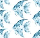 Scalare Голубая безшовная картина с рыбами Стоковое Фото