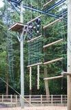 Scalata di avventura del terreno boscoso Immagine Stock