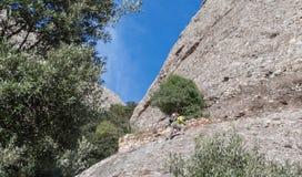 Scalatore, alpinista Immagine Stock Libera da Diritti