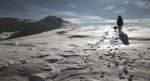 Scalatore della neve Immagini Stock