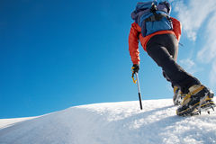 Scalatore di montagna Immagine Stock Libera da Diritti