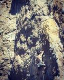 Scalatore di roccia che aderisce ad una scogliera Fotografia Stock Libera da Diritti