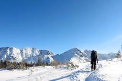 Scalatore sulle montagne nevose Fotografie Stock