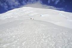 Scalatori alti sul monte Rainier Immagine Stock