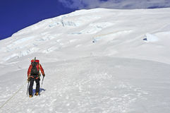 Scalatori alti sul monte Rainier Immagini Stock