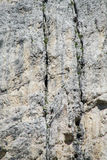 Scalatori che lavorano all'itinerario della parete dell'alpinista Fotografia Stock Libera da Diritti