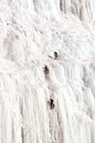 Scalatori del ghiaccio. Immagini Stock Libere da Diritti