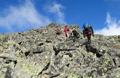Scalatori sulle rocce Immagini Stock