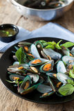 Scald mussel with thai sweet basil and spicy seafood sauce. Boiled scald mussel with spicy seafood sauce Royalty Free Stock Photos
