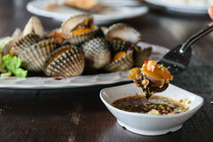 Scald scallops, cockles shell, at Thai restaurant. Royalty Free Stock Photography