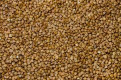 Scalded brown buckwheat, background royalty free stock photos