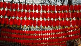 Scaldfish cinesi del glim della lanterna di festival di molla Fotografia Stock