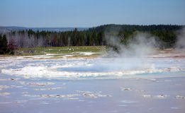 Scalding water of a geyser in yellowstone park Royalty Free Stock Photo