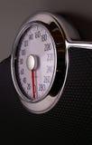 scale Royaltyfri Fotografi