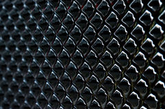 Scale brillanti nere del drago fotografie stock libere da diritti