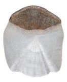 Scale carp. Isolated on white background stock images