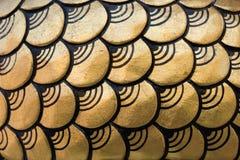 Scale del drago come struttura del fondo Fotografia Stock