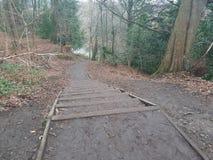 Scale del sentiero per pedoni fotografie stock libere da diritti