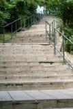 scale della foresta immagini stock libere da diritti