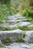 Scale della roccia fotografia stock