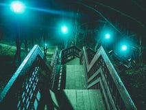 Scale della scala di notte negli alberi forestali Fotografia Stock