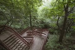 Scale di legno nel parco immagini stock