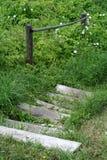 Scale di legno rustiche Fotografia Stock Libera da Diritti
