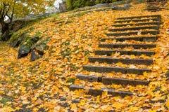 Scale di ottobre Fotografie Stock