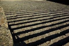Scale di pietra Fotografie Stock Libere da Diritti