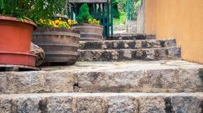 Scale di pietra con i vasi da fiori Fotografia Stock