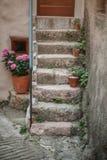 Scale di pietra con i vasi da fiori Immagini Stock