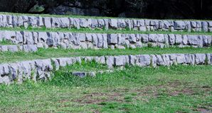 Scale di pietra in foresta Immagini Stock